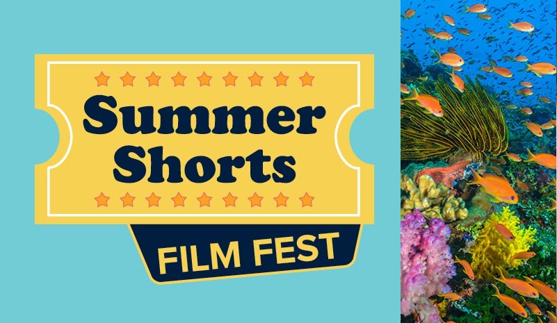 Summer Shorts Film Fest flyer